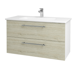Dřevojas - Koupelnová skříň GIO SZZ2 100 - N01 Bílá lesk / Úchytka T02 / D05 Oregon (129644B)