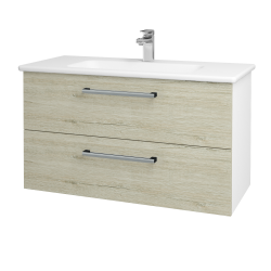 Dřevojas - Koupelnová skříň GIO SZZ2 100 - N01 Bílá lesk / Úchytka T03 / D21 Tobacco (277338C)