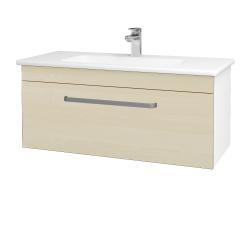 Dřevojas - Koupelnová skříň ASTON SZZ 100 - N01 Bílá lesk / Úchytka T01 / D02 Bříza (131036A)