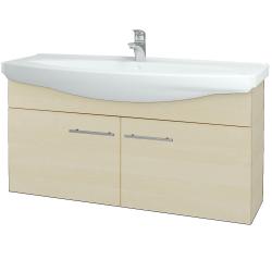 Dřevojas - Koupelnová skříň TAKE IT SZD2 120 - D02 Bříza / Úchytka T02 / D02 Bříza (133528B)