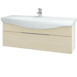 Dřevojas - Koupelnová skříň TAKE IT SZZ 120 - N01 Bílá lesk / Úchytka T05 / D02 Bříza (152741F)