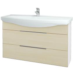 Dřevojas - Koupelnová skříň TAKE IT SZZ2 120 - N01 Bílá lesk / Úchytka T05 / D02 Bříza (153243F)